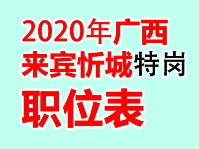 2020广西来宾忻城县特岗教师招聘100人职位表公告(最新消息)