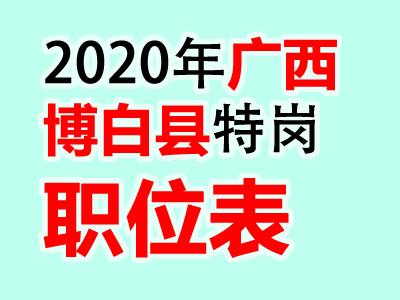 2020年广西博白县特岗教师招聘501人职位表公告(最新消息)