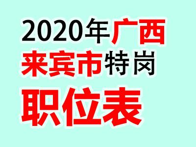 2020广西来宾市兴宾区特岗教师招聘200人公告职位表