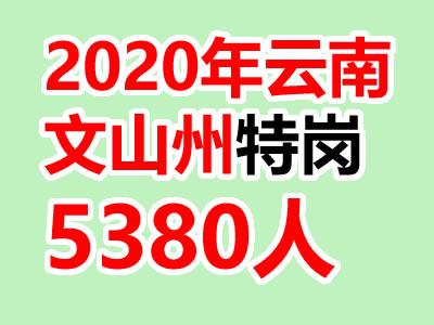 2020云南文山州特岗教师招聘预计计划招聘5380人