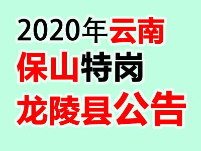 2020云南保山市龙陵县招聘特岗教师80人通告(2)
