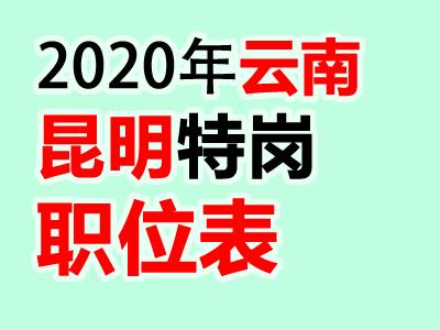 2020云南昆明市特岗教师招聘40人职位表公告