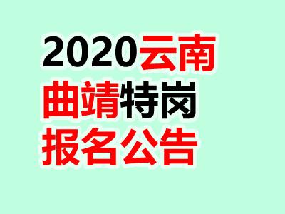 曲靖市2020年特岗教师公开招聘岗位计