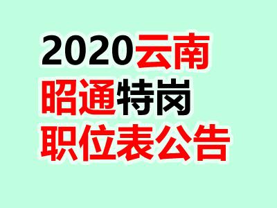 2020云南昭通特岗教师招聘426人考试职
