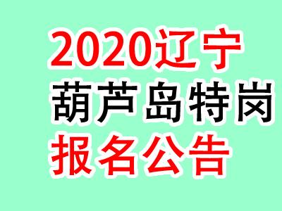 <b>2020辽宁葫芦岛绥中县特岗教师招聘50人公告</b>