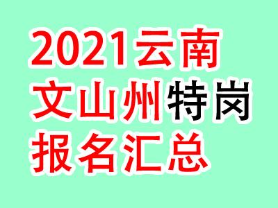 2021云南文山特岗教师报名时间职位表汇总