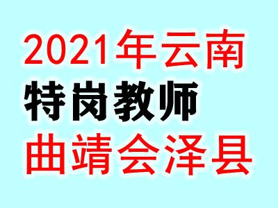 2021云南曲靖会泽县特岗教师招聘120人职位表