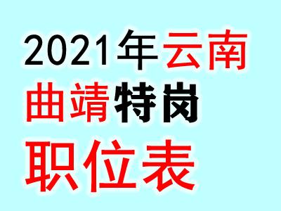 2021云南曲靖市罗平县特岗教师招聘考试100人职位表