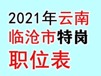 2021年沧源县特岗教师招聘岗位计划表.xlsx