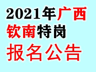2021广西钦州市钦南区特岗教师招聘250人公告